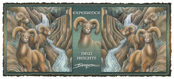 Experience New Heights - Mug