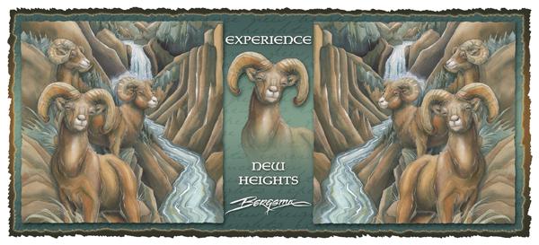 Experience New Heights - Mug
