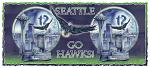 Seattle - Hawk Power! 15oz. Mug