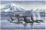 Island Travelers Large Prints (Click for options & image enlargement)