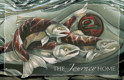 Salmon / The Journey Home - 11 x 17 inch Poster