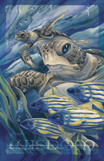 Turtles / The Sea Has Eyes - 11 x 14 inch Poster