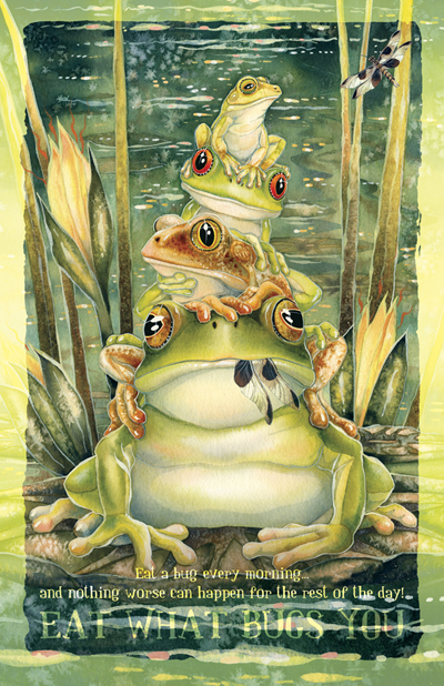Frogs / Top Frog - 11 x 14 inch Poster
