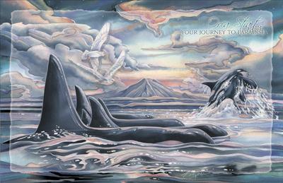Whales/ Orca Strait