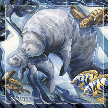 Manatees / Home Sea Home - Tile