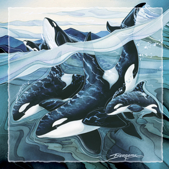 Whales (Orca) / Beauty, Strength & Power - Tile