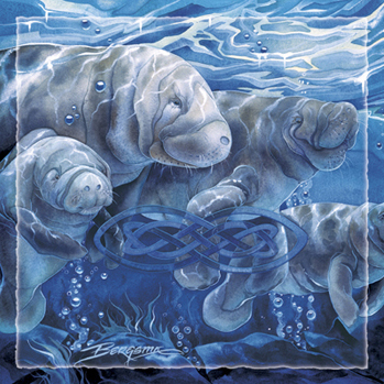 Manatees / Manatees Forever - Tile