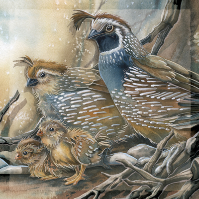 Quails / Carry Happiness Within - Tile