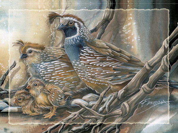 Have A Quail Of A Day - Easel Back Tile