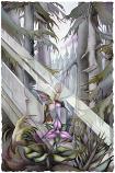 Jewel Large Prints (Click for options & image enlargement)