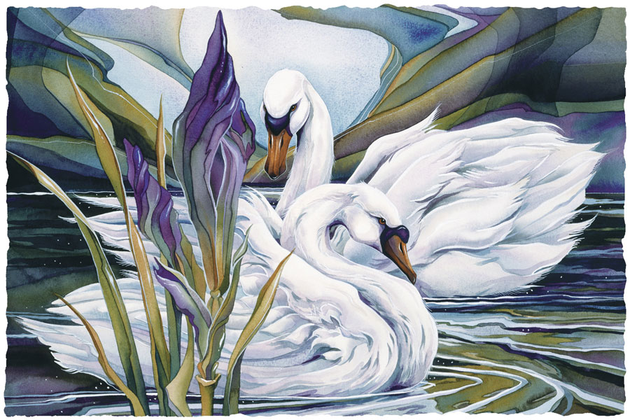 Swans / Everlasting Love - Art Card