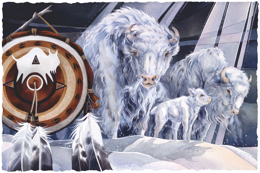White Buffalo - Prints