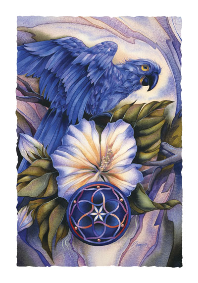 Parrots / Brilliant Destiny - Art Card