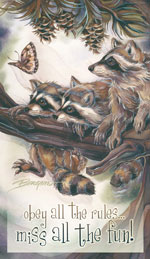 Raccoons / Mischief, Curiosity & Trouble - Mailable Mini