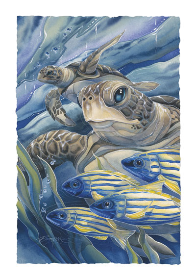 Turtles / The Sea Has Eyes - Art Card