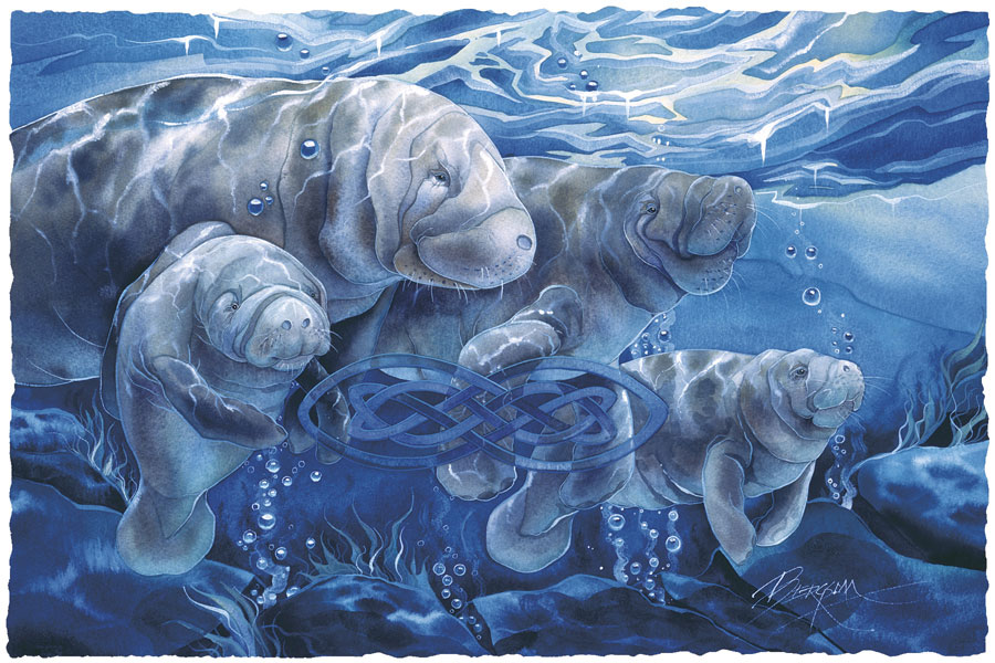 Manatees Forever - Prints