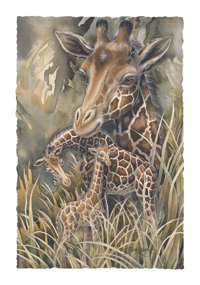 Zoo Misc. / Gentle Presence - Art Card