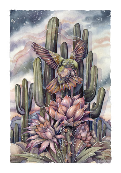 Hummingbirds / Jewel Of The Desert - Art Card