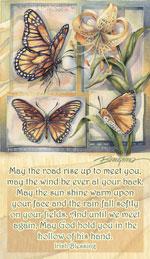 Butterflies / Don't Let Life Flutter-bye - Mailable Mini