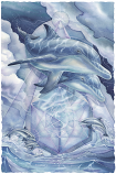 Dolphinity Small Prints (Click for options & image enlargement)