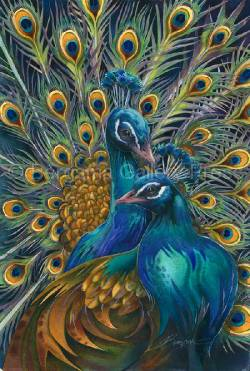 Peacocks / Let Your True Colors Shine Through - Art Card