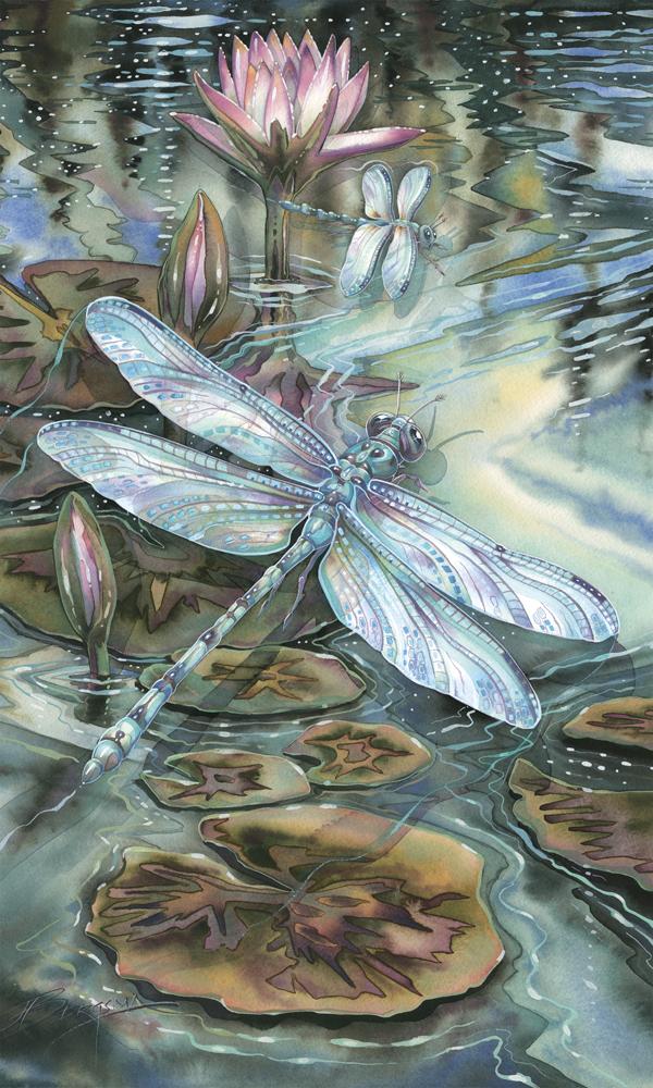 Dragonflies / Wild & Precious Life - Art Card