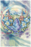 Forget Me Not Small Prints (Click for options & image enlargement)