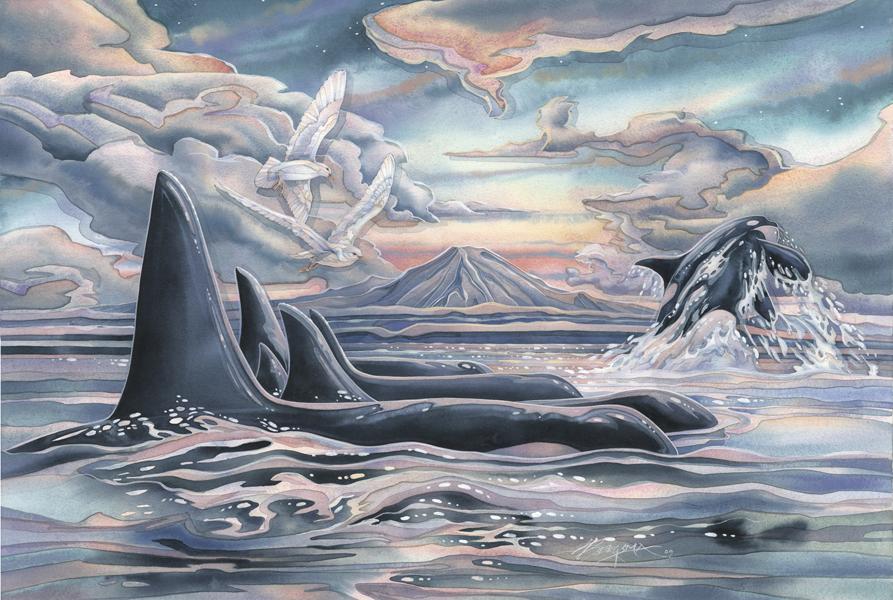 Orca Strait...  - Prints