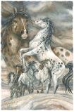 Unbridled Spirit Small Prints (Click for options & image enlargement)