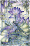 Amethyst Sunrise...A New Day Begins Small Prints (Click for options & image enlargement)