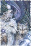 Unforgettable Journey Large Prints (Click for options & image enlargement)