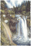 Friends Of Snoqualmie Small Prints (Click for options & image enlargement)