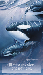 Whales (Orca) / The Pod Squad - Mailable Mini